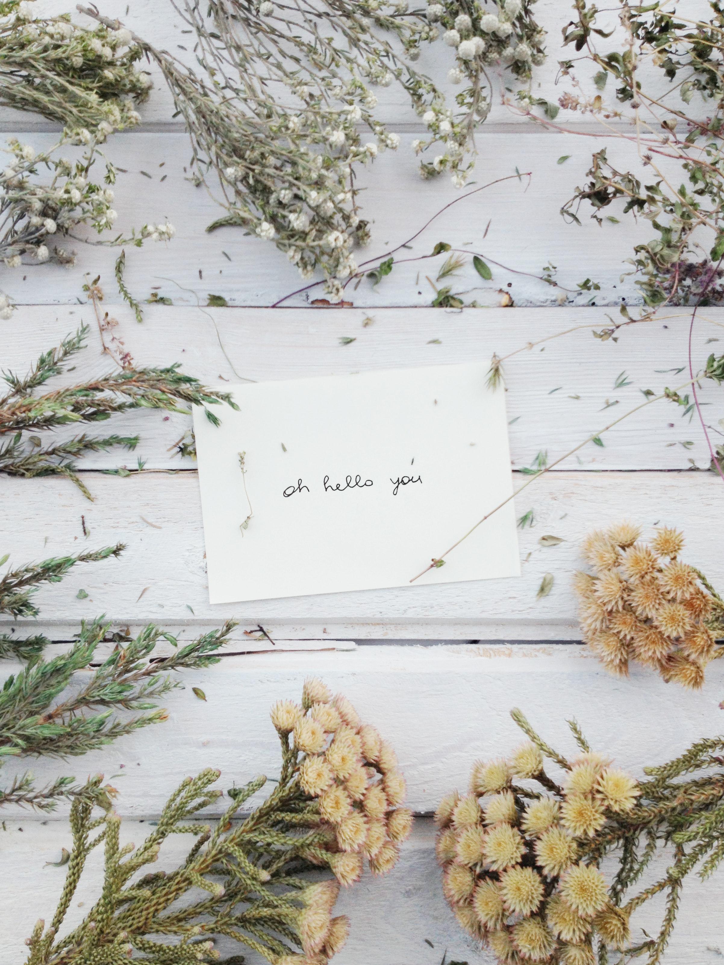 Goldenseal for Winter maladies